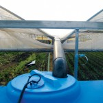 Rainwater harvesting on a farm in the venice lagoon